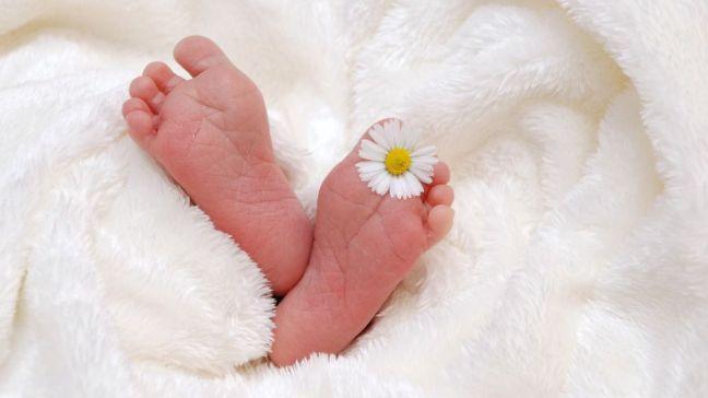 Devolución de las prestaciones de maternidad y paternidad: 1.600 euros para las madres y 383 para los padres
