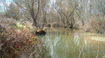 El Ayuntamiento de Móstoles pone en marcha el programa ambiental del Aula de la Naturaleza