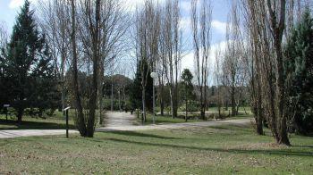 Reabren los parques de Móstoles tras desactivarse los avisos por fuertes vientos