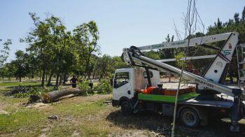Móstoles reabre el jueves el parque de 'El Soto'