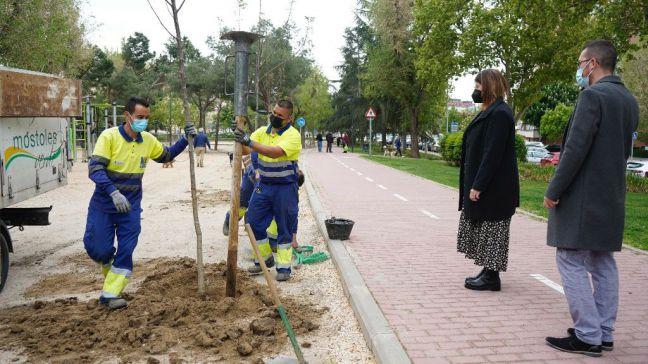 Móstoles continúa con las labores de mejora y reacondicionamiento de las zonas verdes de la ciudad