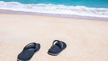 ¿Qué hacer ante la inminente ola de calor?