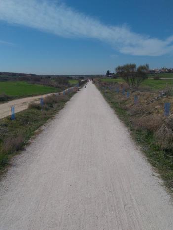 Plantados más de 400 árboles y arbustos en los últimos dos meses para repoblar la Vía Verde