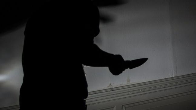 El acusado de degollar a su compañera de piso en Alcorcón pide perdón a la familia